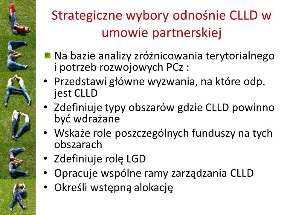 Strategiczne wybory odnośnie CLLD w umowie partnerskiej Na bazie analizy zróżnicowania terytorialnego i potrzeb rozwojowych PCz : Przedstawi główne wyzwania, na które odp.