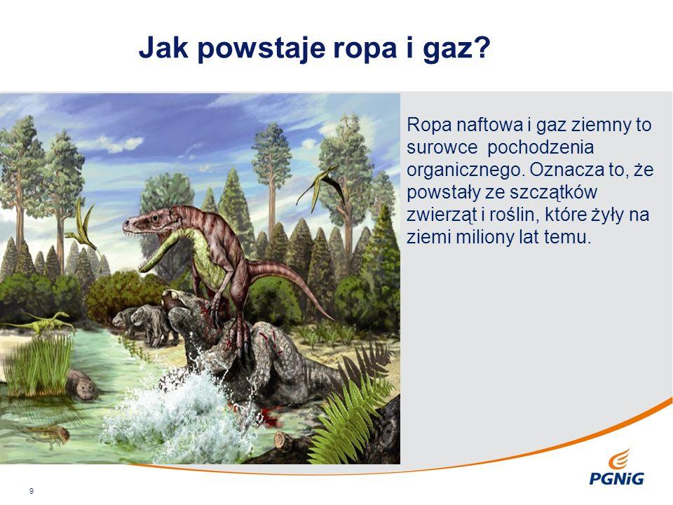 Jak powstaje ropa i gaz? 9 Ropa naftowa i gaz ziemny to surowce pochodzenia organicznego. Oznacza to, że powstały ze szczątków zwierząt i roślin, któr