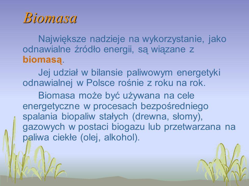 Biomasa Największe nadzieje na wykorzystanie, jako odnawialne źródło energii, są wiązane z biomasą.