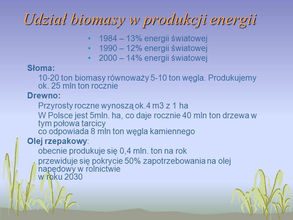 Udział biomasy w produkcji energii 1984 – 13% energii światowej 1990 – 12% energii światowej 2000 – 14% energii światowej Słoma: 10-20 ton biomasy równoważy 5-10 ton węgla.