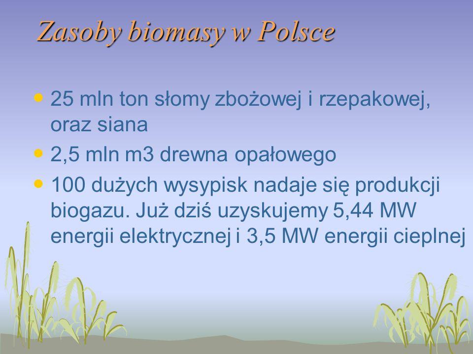 Zasoby biomasy w Polsce 25 mln ton słomy zbożowej i rzepakowej, oraz siana 2,5 mln m3 drewna opałowego 100 dużych wysypisk nadaje się produkcji biogazu.