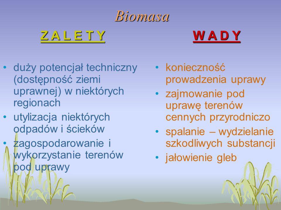 BiomasaZ A L E T Y duży potencjał techniczny (dostępność ziemi uprawnej) w niektórych regionach utylizacja niektórych odpadów i ścieków zagospodarowanie i wykorzystanie terenów pod uprawy W A D Y konieczność prowadzenia uprawy zajmowanie pod uprawę terenów cennych przyrodniczo spalanie – wydzielanie szkodliwych substancji jałowienie gleb
