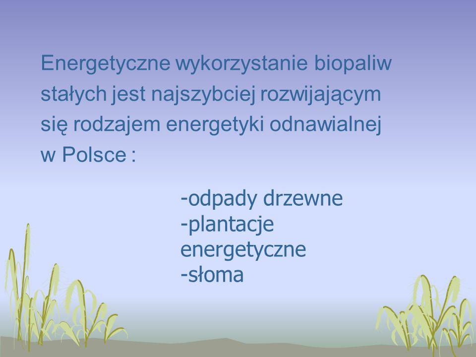 Energetyczne wykorzystanie biopaliw stałych jest najszybciej rozwijającym się rodzajem energetyki odnawialnej w Polsce : -odpady drzewne -plantacje energetyczne -słoma