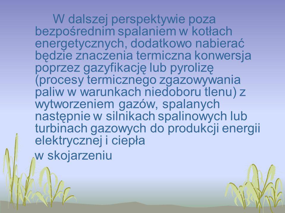W dalszej perspektywie poza bezpośrednim spalaniem w kotłach energetycznych, dodatkowo nabierać będzie znaczenia termiczna konwersja poprzez gazyfikację lub pyrolizę (procesy termicznego zgazowywania paliw w warunkach niedoboru tlenu) z wytworzeniem gazów, spalanych następnie w silnikach spalinowych lub turbinach gazowych do produkcji energii elektrycznej i ciepła w skojarzeniu