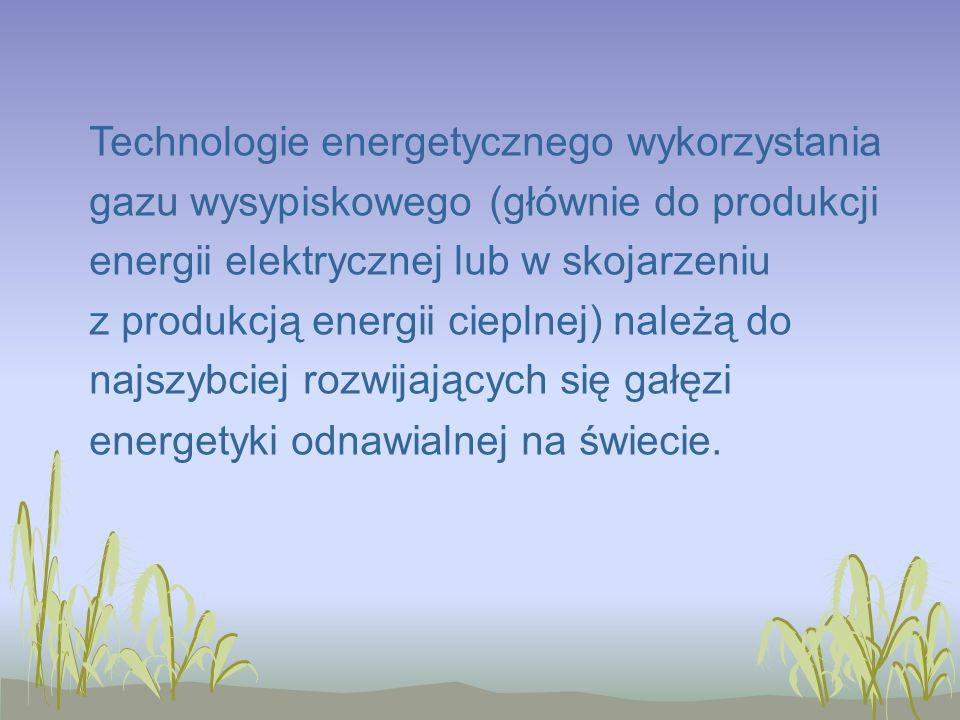 Technologie energetycznego wykorzystania gazu wysypiskowego (głównie do produkcji energii elektrycznej lub w skojarzeniu z produkcją energii cieplnej) należą do najszybciej rozwijających się gałęzi energetyki odnawialnej na świecie.