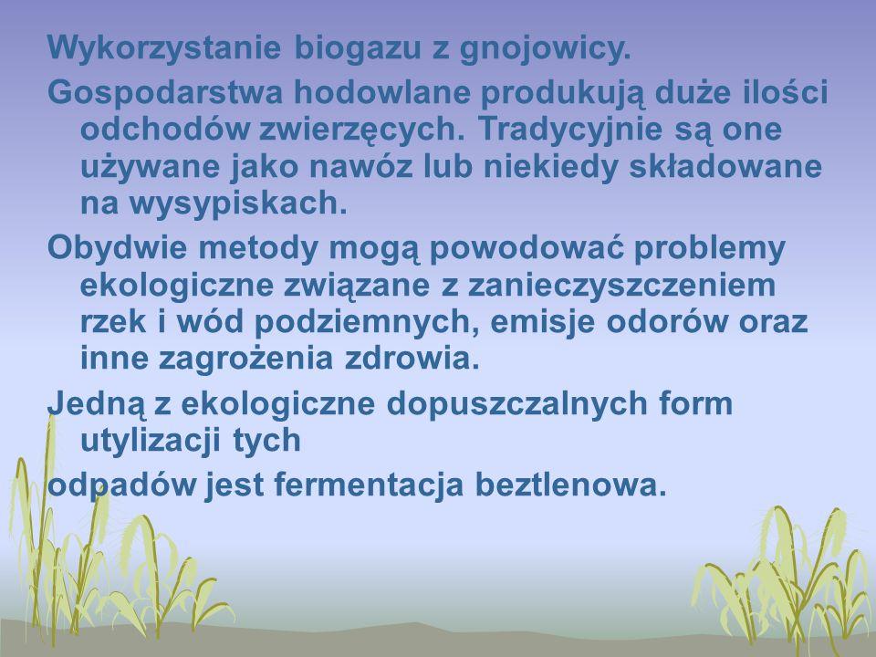 Wykorzystanie biogazu z gnojowicy.