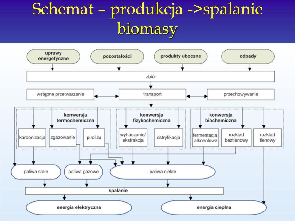 biomasy Schemat – produkcja ->spalanie biomasy