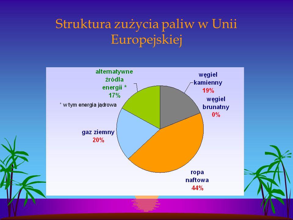 Struktura zużycia paliw w Unii Europejskiej