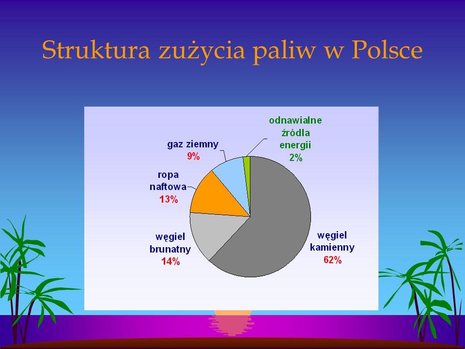 Struktura zużycia paliw w Polsce