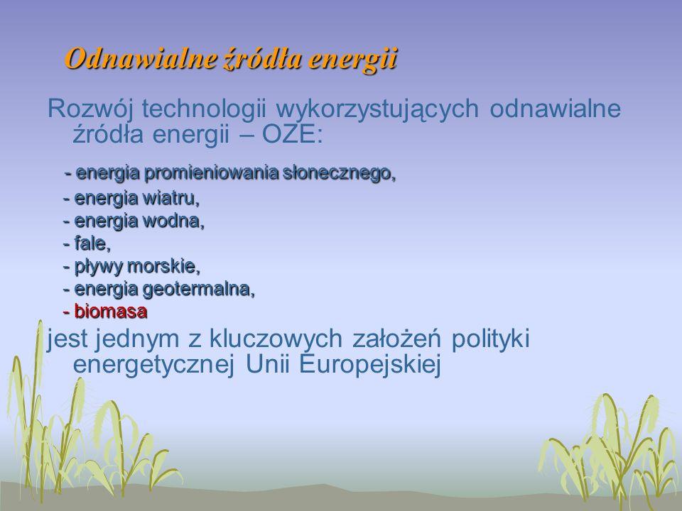 Odnawialne źródła energii Rozwój technologii wykorzystujących odnawialne źródła energii – OZE: - energia promieniowania słonecznego, - energia wiatru, - energia wiatru, - energia wodna, - energia wodna, - fale, - fale, - pływy morskie, - pływy morskie, - energia geotermalna, - energia geotermalna, - biomasa - biomasa jest jednym z kluczowych założeń polityki energetycznej Unii Europejskiej
