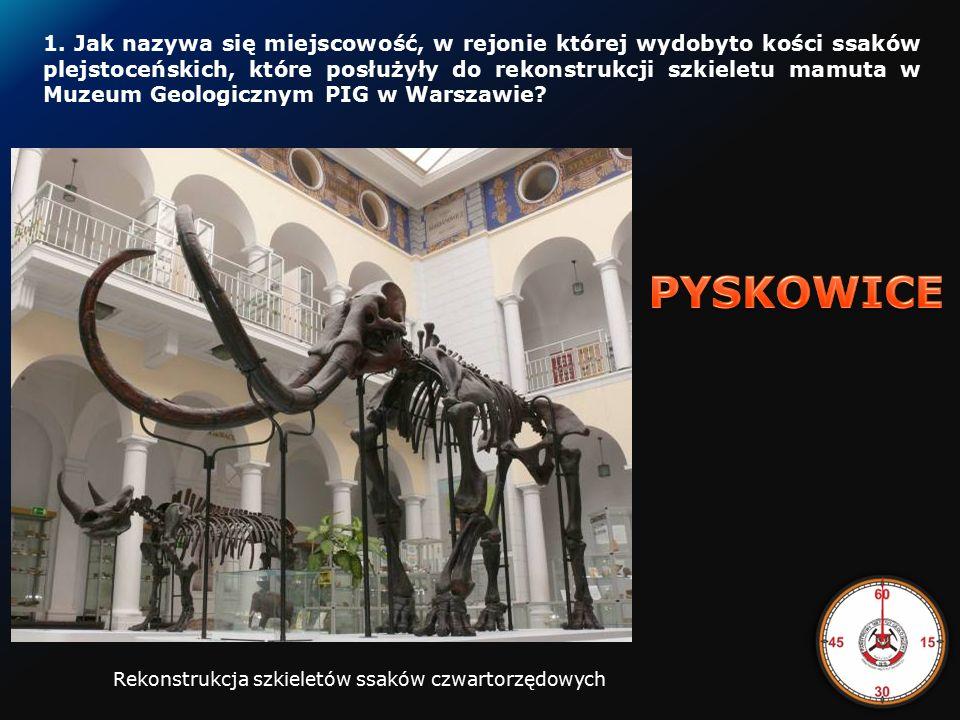 Uczestnicy odpowiadają na 10 pytań dotyczących geologii Polski.