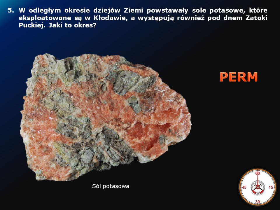 4.Z jakiego okresu geologicznego pochodzą skały, z którego zbudowane są Rysy w Tatrach.