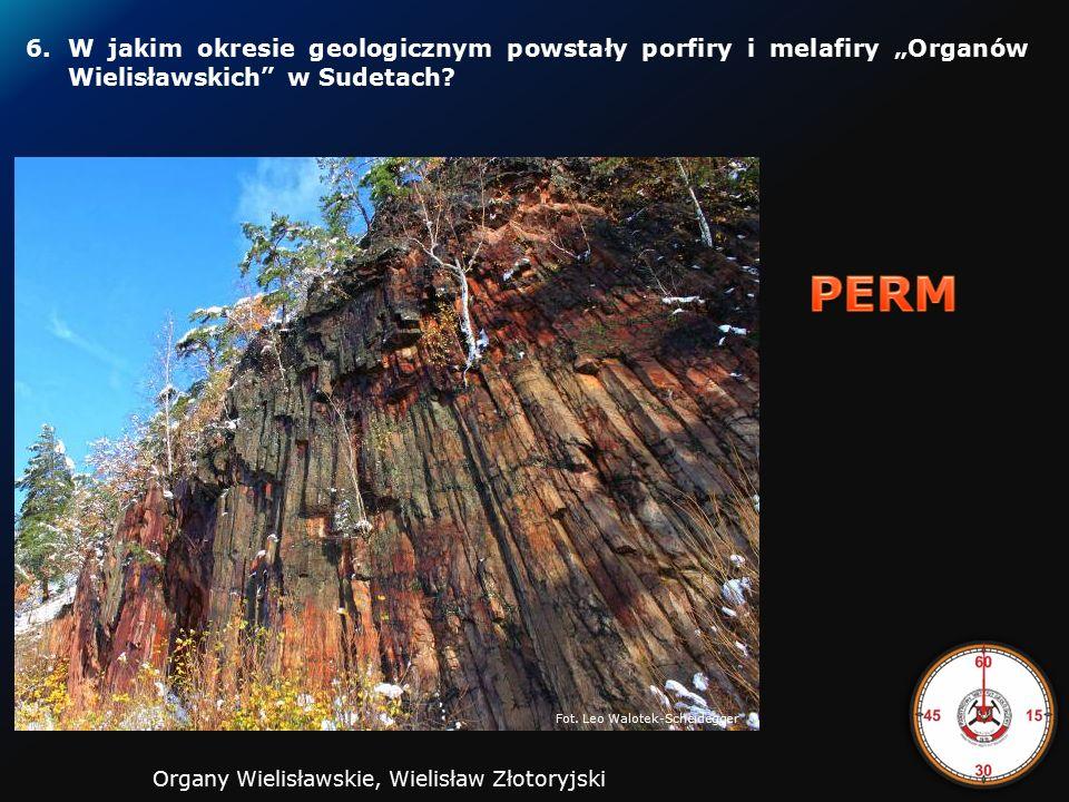 5.W odległym okresie dziejów Ziemi powstawały sole potasowe, które eksploatowane są w Kłodawie, a występują również pod dnem Zatoki Puckiej.