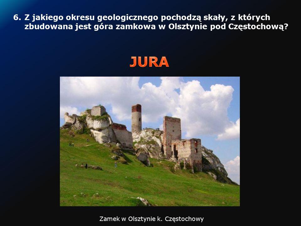 5.W skałach jakiego wieku (podaj okres) znajdują się eksploatowane w Polsce rudy cynku i ołowiu.