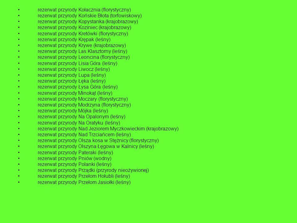 rezerwat przyrody Kołacznia (florystyczny) rezerwat przyrody Końskie Błota (torfowiskowy) rezerwat przyrody Kopystanka (krajobrazowy) rezerwat przyrod