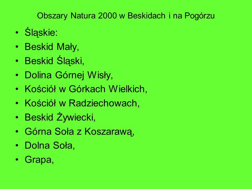 Obszary Natura 2000 w Beskidach i na Pogórzu Śląskie: Beskid Mały, Beskid Śląski, Dolina Górnej Wisły, Kościół w Górkach Wielkich, Kościół w Radziecho