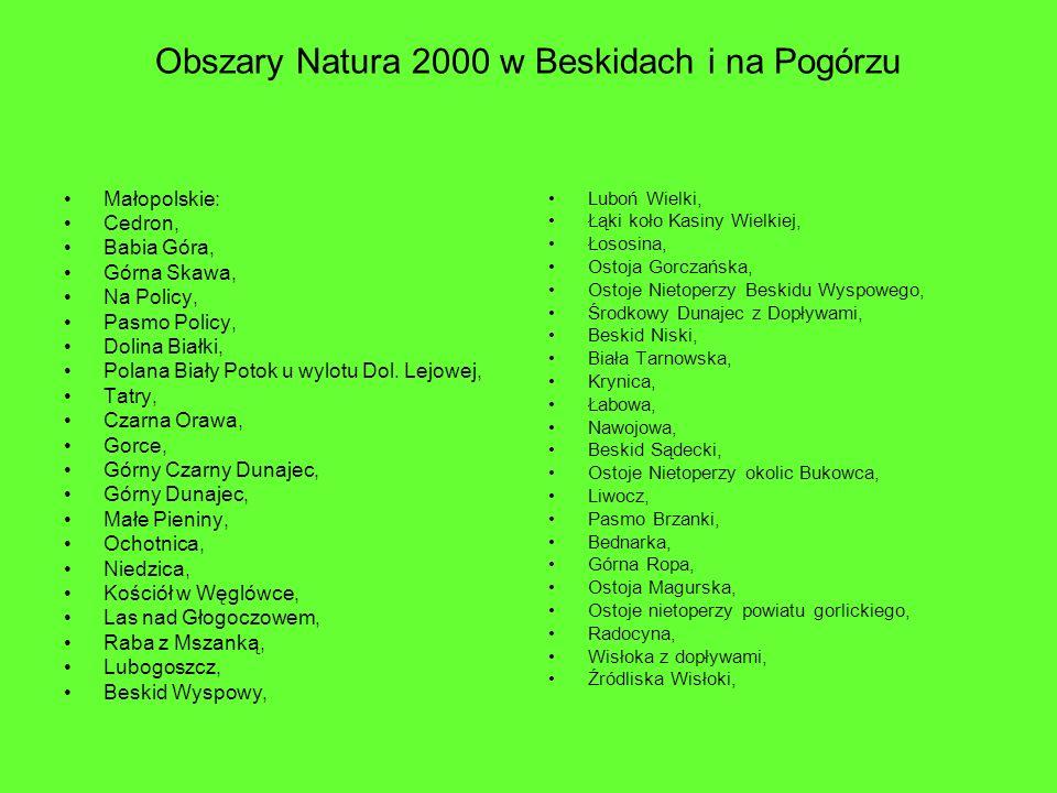 Obszary Natura 2000 w Beskidach i na Pogórzu Małopolskie: Cedron, Babia Góra, Górna Skawa, Na Policy, Pasmo Policy, Dolina Białki, Polana Biały Potok