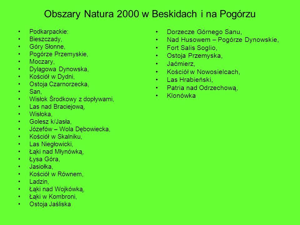 Obszary Natura 2000 w Beskidach i na Pogórzu Podkarpackie: Bieszczady, Góry Słonne, Pogórze Przemyskie, Moczary, Dylągowa Dynowska, Kościół w Dydni, O