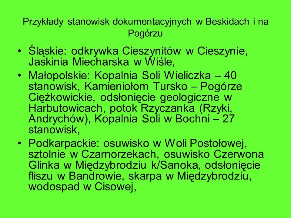 Przykłady stanowisk dokumentacyjnych w Beskidach i na Pogórzu Śląskie: odkrywka Cieszynitów w Cieszynie, Jaskinia Miecharska w Wiśle, Małopolskie: Kop