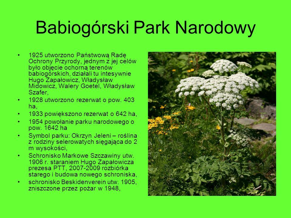 Babiogórski Park Narodowy 1925 utworzono Państwową Radę Ochrony Przyrody, jednym z jej celów było objęcie ochorną terenów babiogórskich, działali tu i