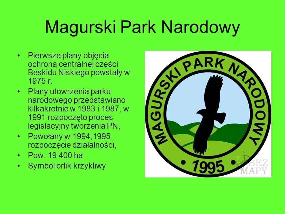 Magurski Park Narodowy Pierwsze plany objęcia ochroną centralnej części Beskidu Niskiego powstały w 1975 r. Plany utowrzenia parku narodowego przedsta