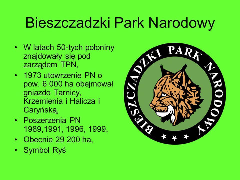 Bieszczadzki Park Narodowy W latach 50-tych połoniny znajdowały się pod zarządem TPN, 1973 utowrzenie PN o pow. 6 000 ha obejmował gniazdo Tarnicy, Kr