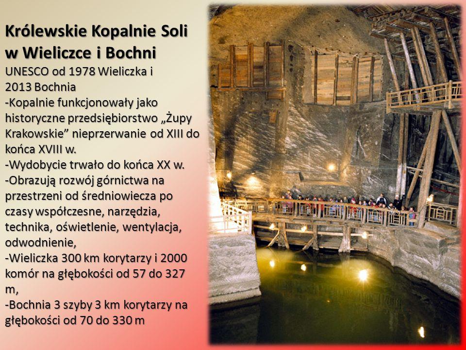 """Królewskie Kopalnie Soli w Wieliczce i Bochni UNESCO od 1978 Wieliczka i 2013 Bochnia -Kopalnie funkcjonowały jako historyczne przedsiębiorstwo """"Żupy"""