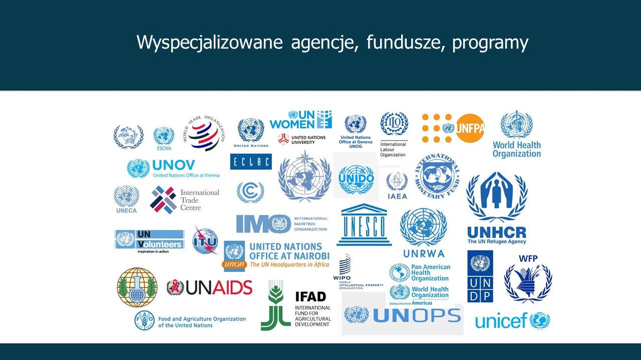 Wyspecjalizowane agencje, fundusze, programy