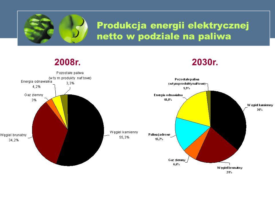 Produkcja energii elektrycznej netto w podziale na paliwa 2008r.2030r.