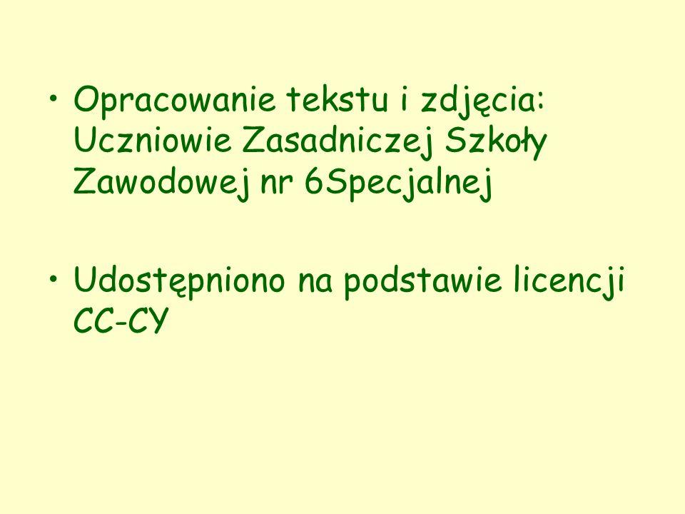 Opracowanie tekstu i zdjęcia: Uczniowie Zasadniczej Szkoły Zawodowej nr 6Specjalnej Udostępniono na podstawie licencji CC-CY