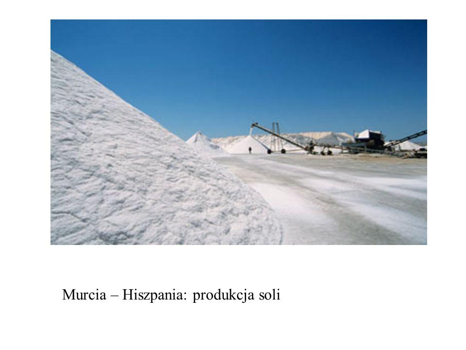 Murcia – Hiszpania: produkcja soli