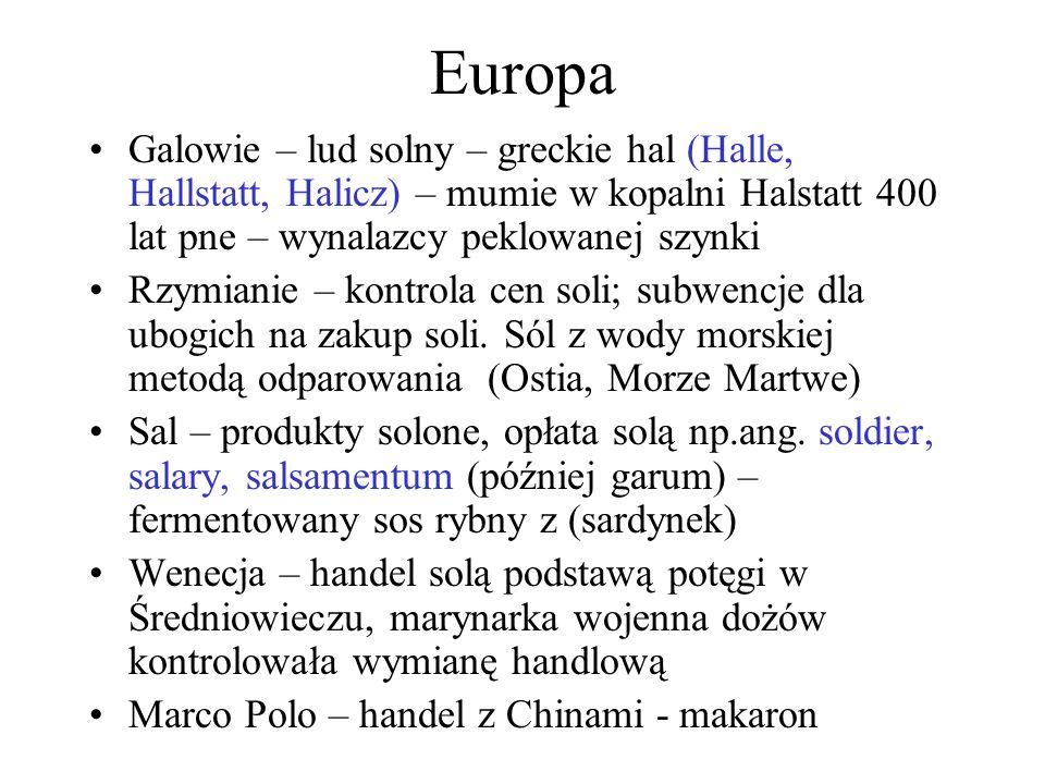 Europa Galowie – lud solny – greckie hal (Halle, Hallstatt, Halicz) – mumie w kopalni Halstatt 400 lat pne – wynalazcy peklowanej szynki Rzymianie – kontrola cen soli; subwencje dla ubogich na zakup soli.