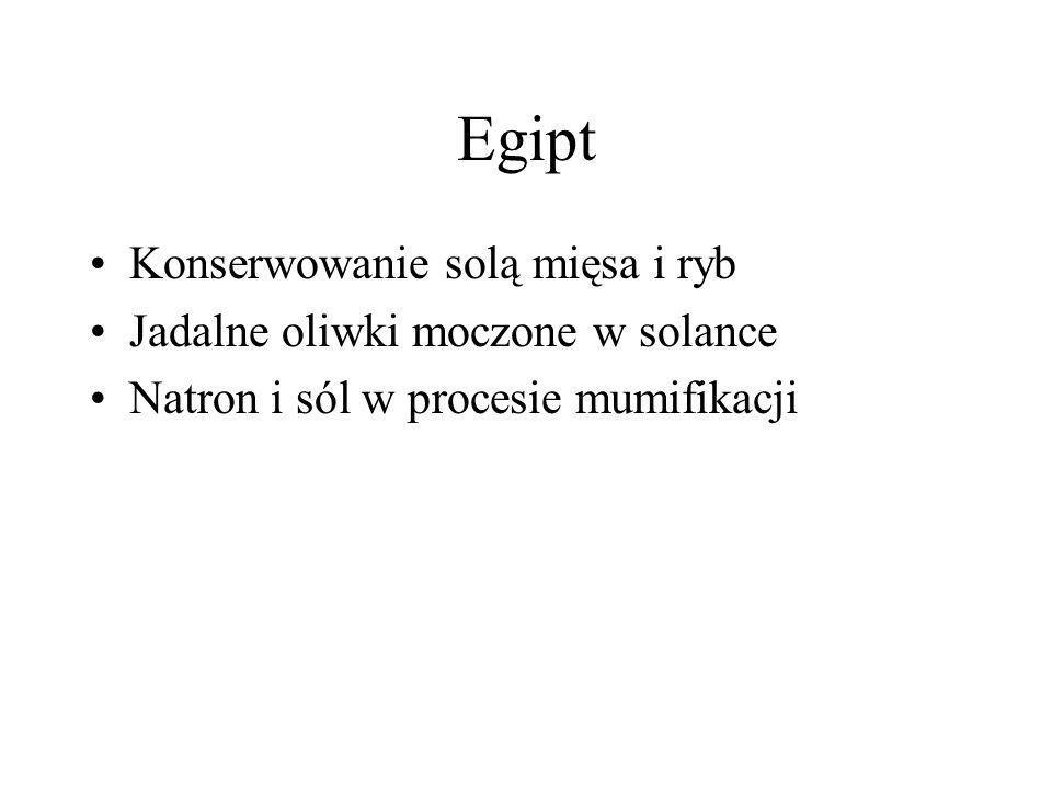 Egipt Konserwowanie solą mięsa i ryb Jadalne oliwki moczone w solance Natron i sól w procesie mumifikacji