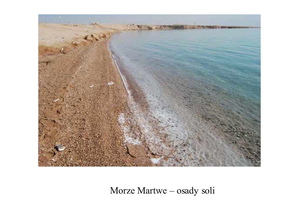 Morze Martwe – osady soli