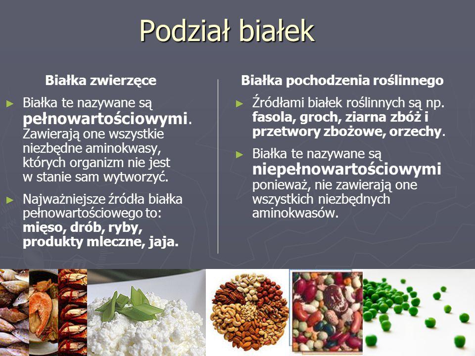 Podział białek Białka zwierzęce ► ► Białka te nazywane są pełnowartościowymi. Zawierają one wszystkie niezbędne aminokwasy, których organizm nie jest