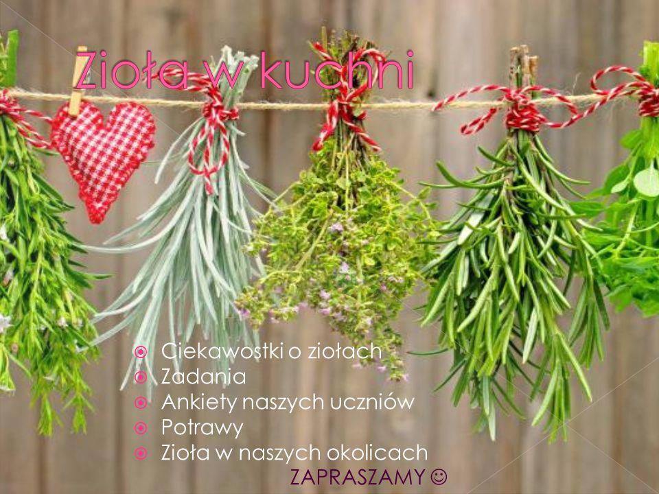  Ciekawostki o ziołach  Zadania  Ankiety naszych uczniów  Potrawy  Zioła w naszych okolicach ZAPRASZAMY