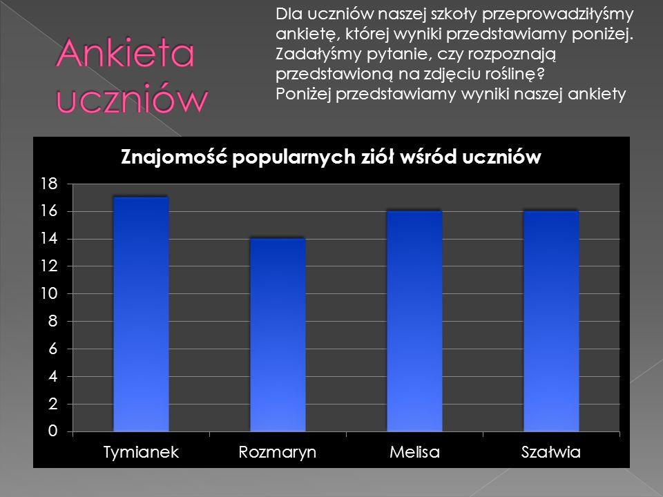 Dla uczniów naszej szkoły przeprowadziłyśmy ankietę, której wyniki przedstawiamy poniżej.