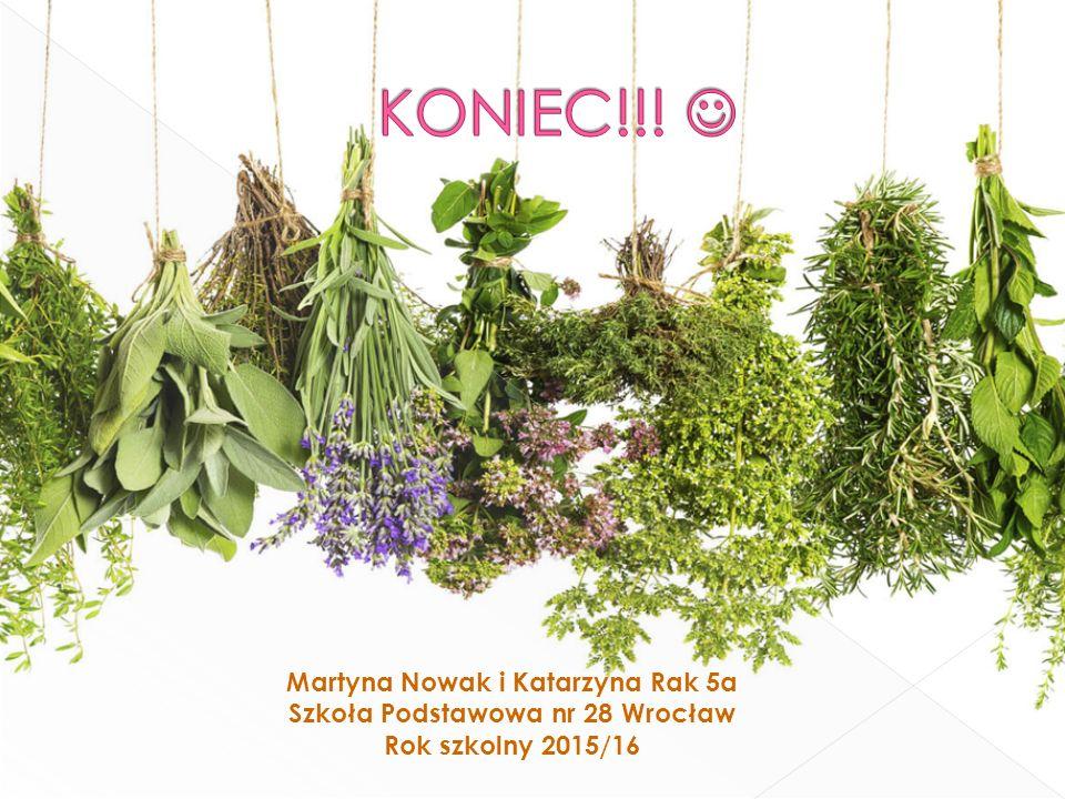Martyna Nowak i Katarzyna Rak 5a Szkoła Podstawowa nr 28 Wrocław Rok szkolny 2015/16