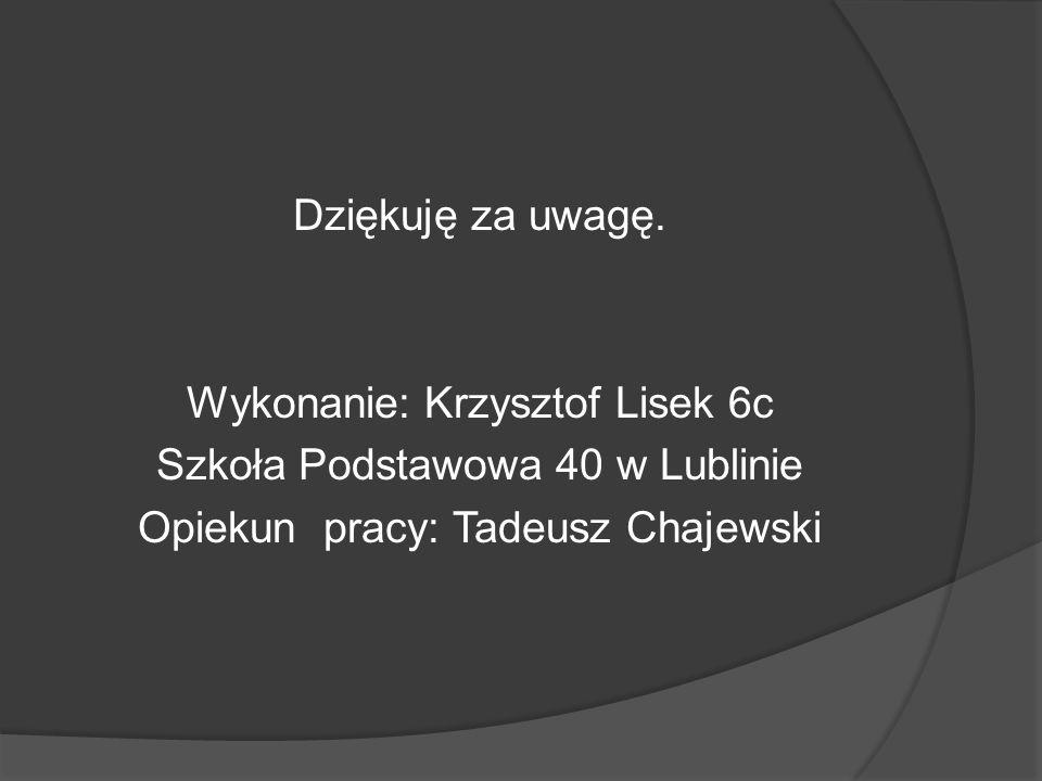 Dziękuję za uwagę. Wykonanie: Krzysztof Lisek 6c Szkoła Podstawowa 40 w Lublinie Opiekun pracy: Tadeusz Chajewski