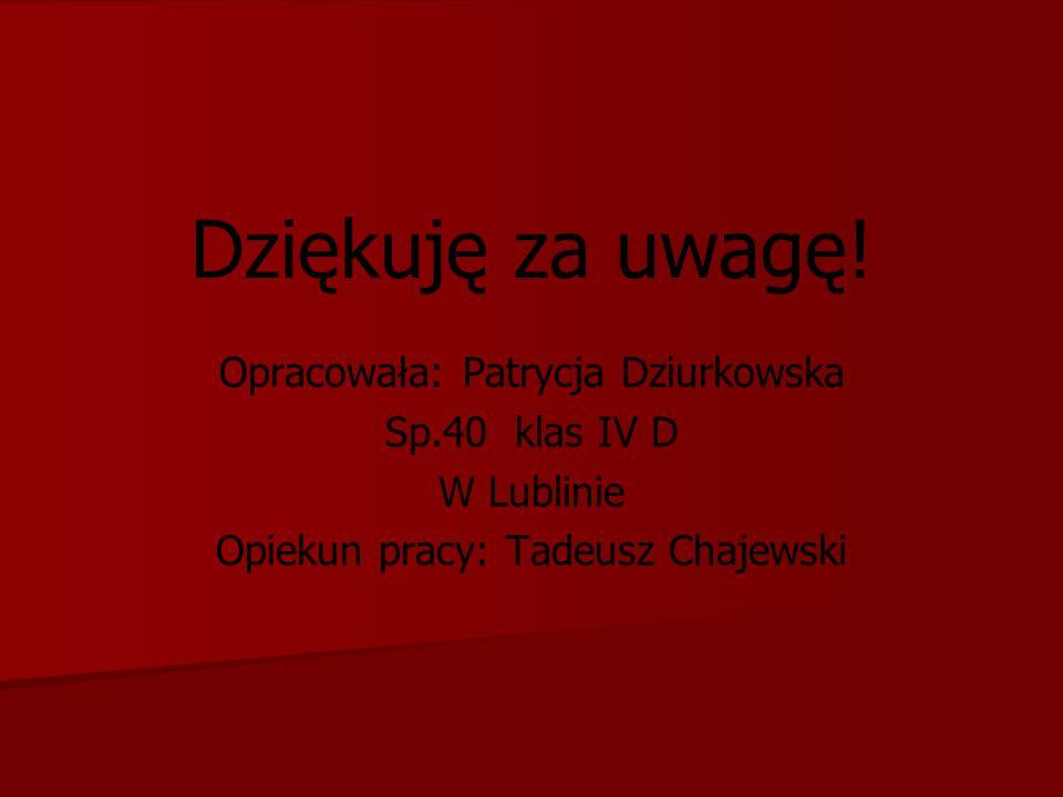 Opracowała: Patrycja Dziurkowska Sp.40 klas IV D W Lublinie Opiekun pracy: Tadeusz Chajewski Dziękuję za uwagę!