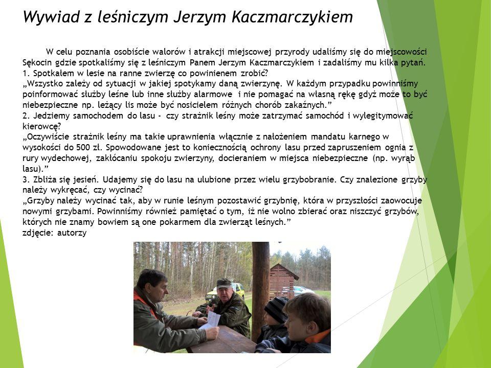 Wywiad z leśniczym Jerzym Kaczmarczykiem W celu poznania osobiście walorów i atrakcji miejscowej przyrody udaliśmy się do miejscowości Sękocin gdzie spotkaliśmy się z leśniczym Panem Jerzym Kaczmarczykiem i zadaliśmy mu kilka pytań.