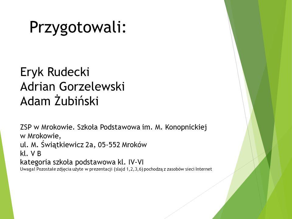 Eryk Rudecki Adrian Gorzelewski Adam Żubiński ZSP w Mrokowie.