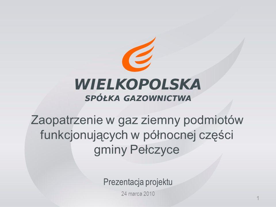 1 Zaopatrzenie w gaz ziemny podmiotów funkcjonujących w północnej części gminy Pełczyce Prezentacja projektu 24 marca 2010