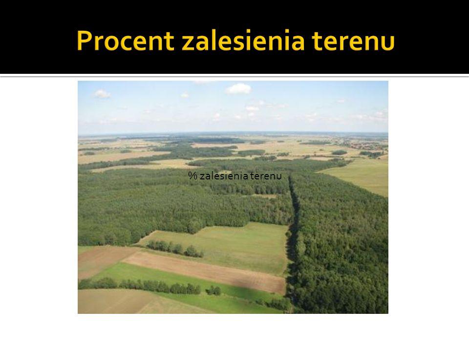 % zalesienia terenu