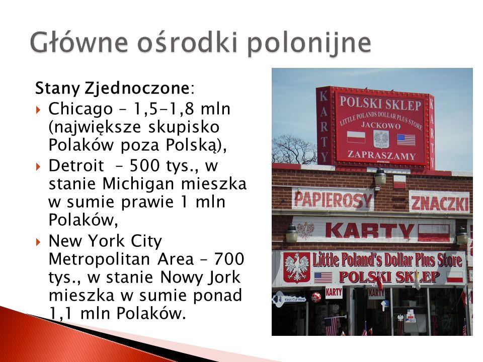 Stany Zjednoczone:  Chicago – 1,5-1,8 mln (największe skupisko Polaków poza Polską),  Detroit – 500 tys., w stanie Michigan mieszka w sumie prawie 1