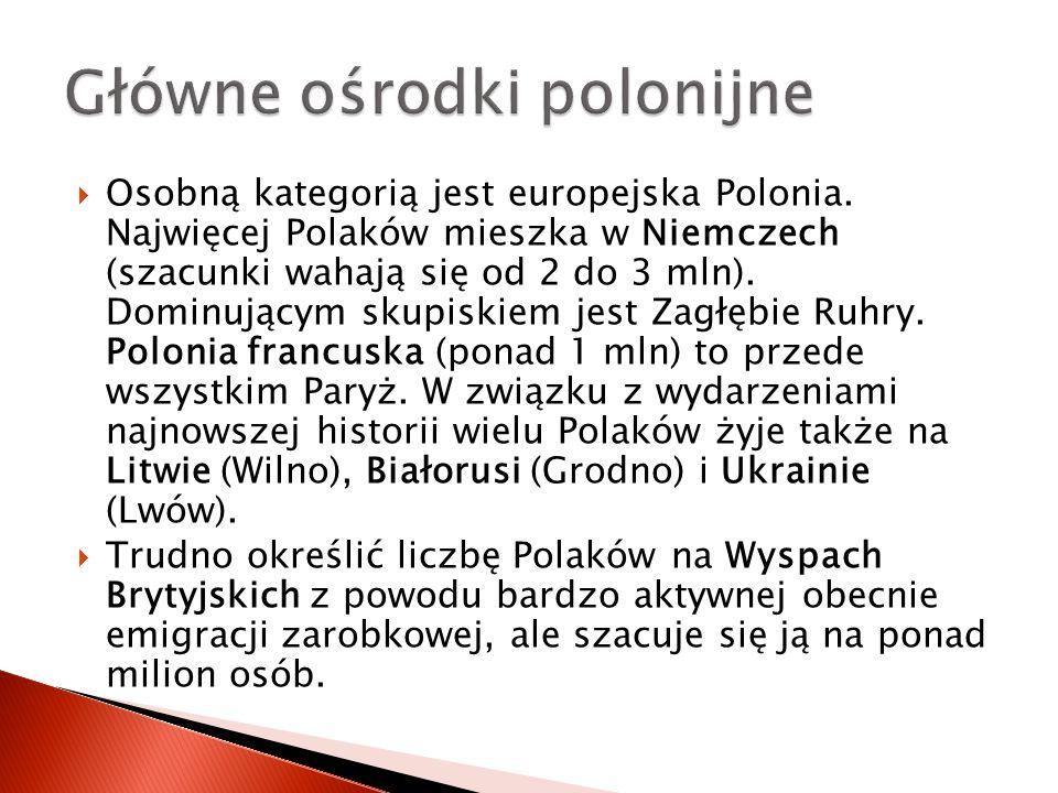  Osobną kategorią jest europejska Polonia. Najwięcej Polaków mieszka w Niemczech (szacunki wahają się od 2 do 3 mln). Dominującym skupiskiem jest Zag