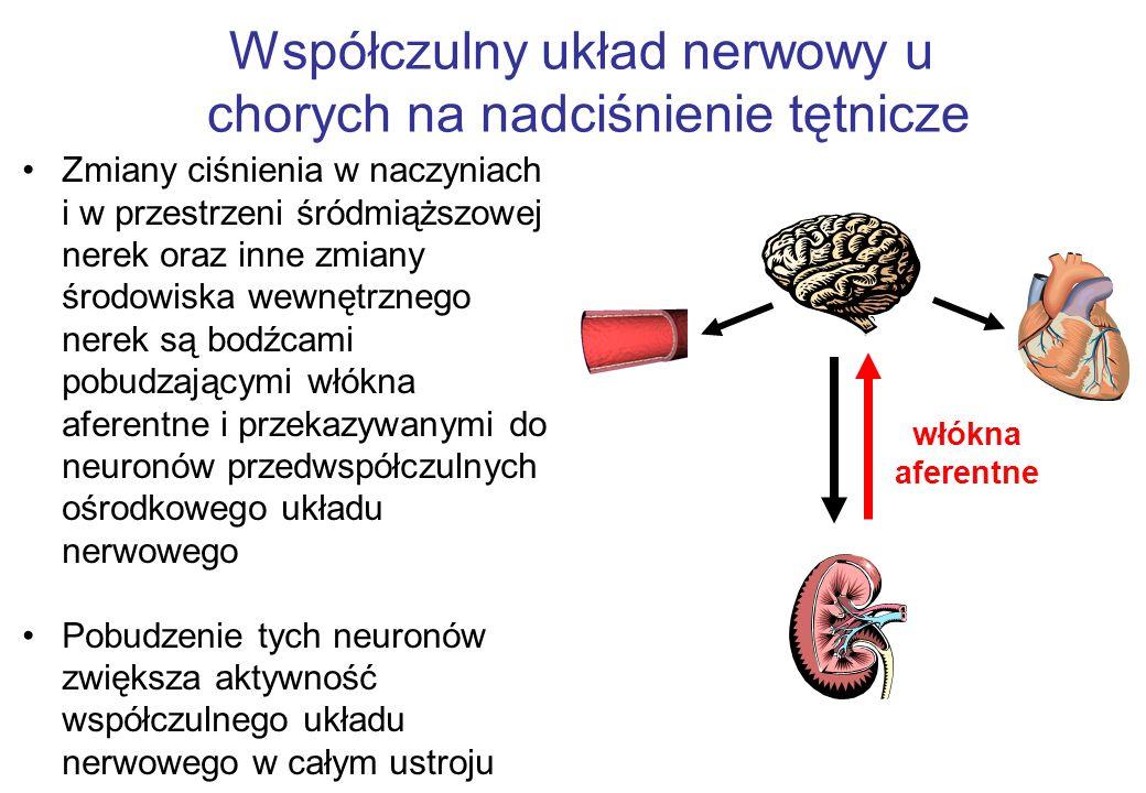 Współczulny układ nerwowy u chorych na nadciśnienie tętnicze Zmiany ciśnienia w naczyniach i w przestrzeni śródmiąższowej nerek oraz inne zmiany środowiska wewnętrznego nerek są bodźcami pobudzającymi włókna aferentne i przekazywanymi do neuronów przedwspółczulnych ośrodkowego układu nerwowego Pobudzenie tych neuronów zwiększa aktywność współczulnego układu nerwowego w całym ustroju włókna aferentne