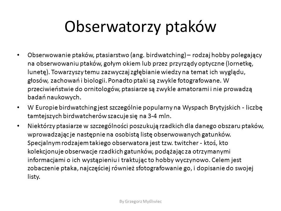 Obserwatorzy ptaków Obserwowanie ptaków, ptasiarstwo (ang.