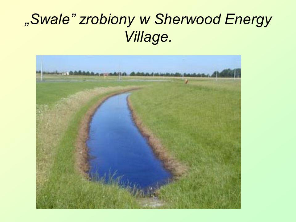 """""""Swale zrobiony w Sherwood Energy Village."""