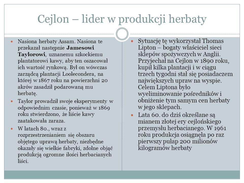 Cejlon – lider w produkcji herbaty Nasiona herbaty Assam.
